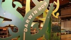 Exposição Darwin Now na Estação Ciência. Foto: Marcos Santos/ USP Imagens