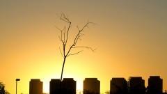 Vista do pôr do sol da Cidade Universitária. Foto: Marcos Santos/USP Imagens