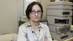Beatriz Rosana Cordenunsi. Professora Titular do Departamento de Alimentos e Nutrição Experimental. Foto: Marcos Santos/USP Imagens