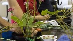 Detalhe de arrumação de vaso de planta no curso de Ikebana (arranjos de flores) na Casa de Cultura Japonesa, ligada à Faculdade de Filosofia, Letras e Ciências Humanas (FFLCH). O curso é dado anualmente como parte das atividades de divulgação das arte tradicional japonesa. Foto: Pedro Bolle / USP Imagens